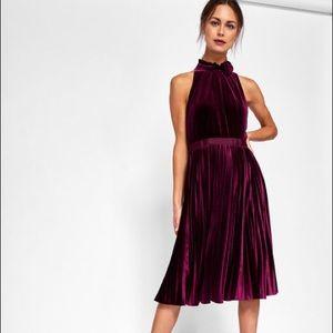 bb5faaca3199 Ted Baker London Dresses - Cornela Pleated Velvet Midi Dress